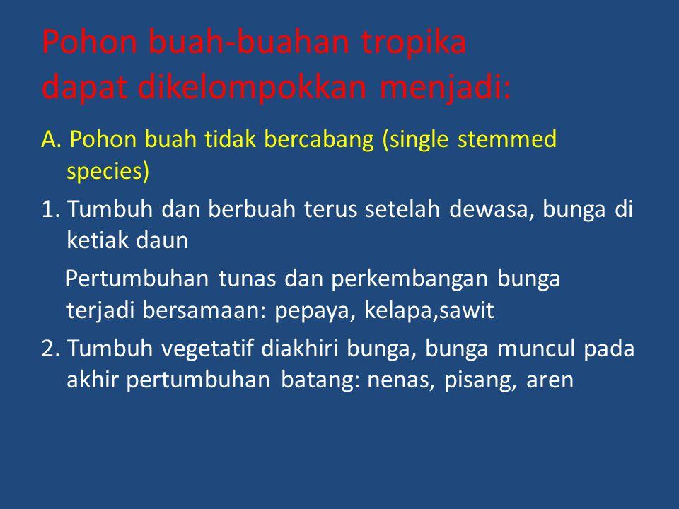 Pohon buah-buahan tropika dapat dikelompokkan menjadi: