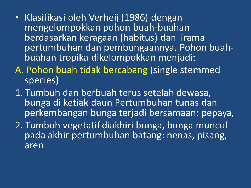 Klasifikasi oleh Verheij (1986) dengan mengelompokkan pohon buah-buahan berdasarkan keragaan (habitus) dan irama pertumbuhan dan pembungaannya. Pohon buah-buahan tropika dikelompokkan menjadi:
