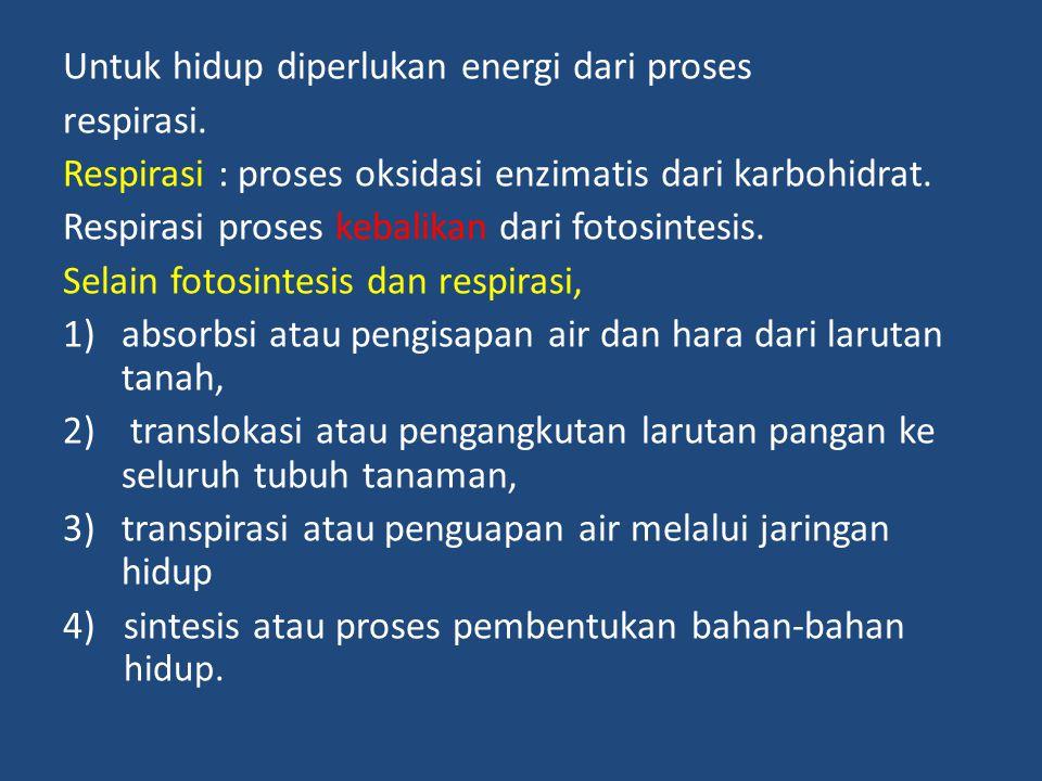 Untuk hidup diperlukan energi dari proses
