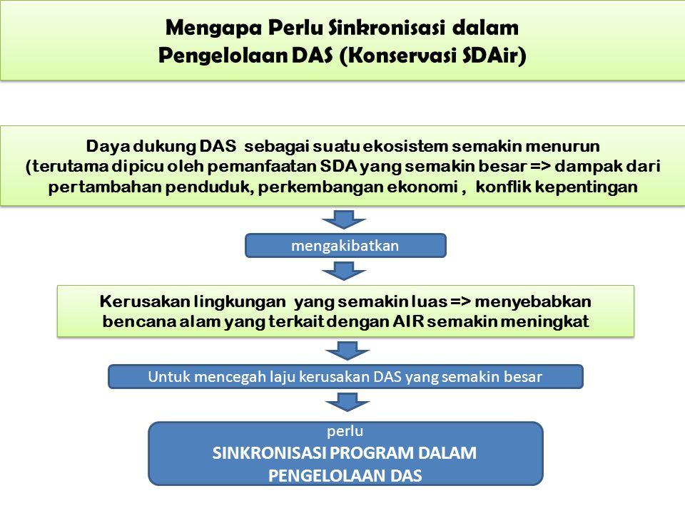 Mengapa Perlu Sinkronisasi dalam Pengelolaan DAS (Konservasi SDAir)