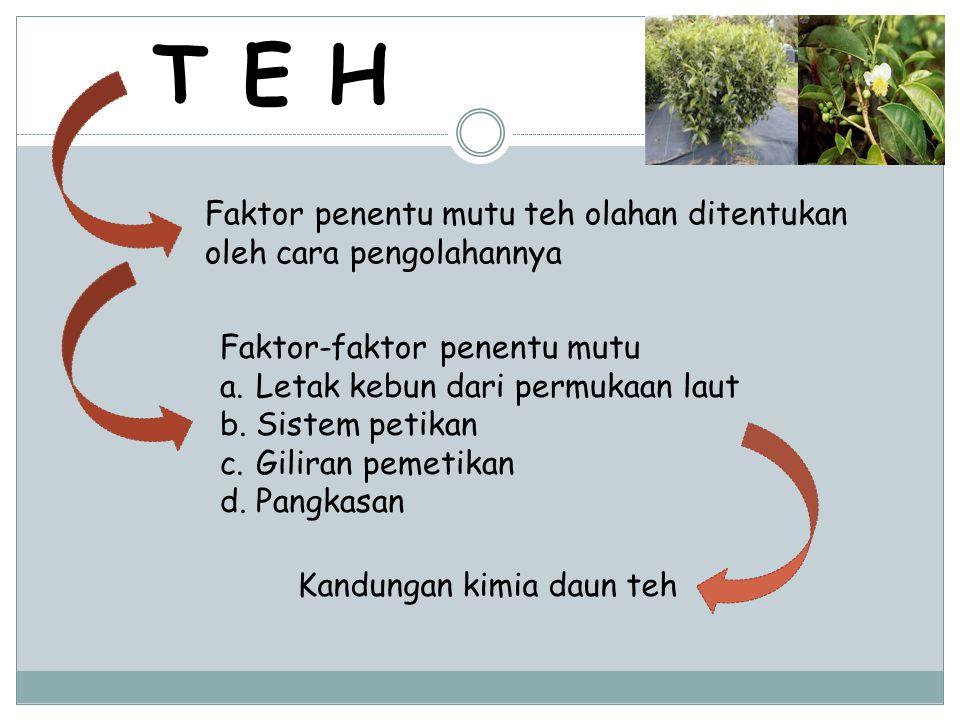 Kandungan kimia daun teh