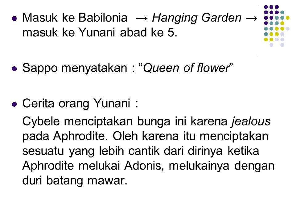 Masuk ke Babilonia → Hanging Garden → masuk ke Yunani abad ke 5.