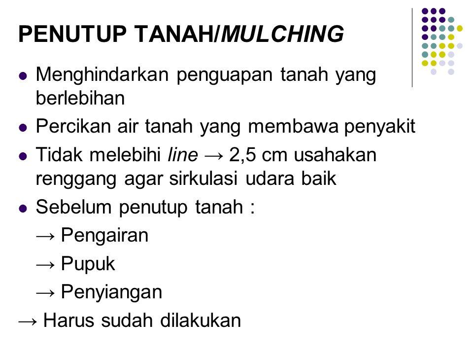 PENUTUP TANAH/MULCHING