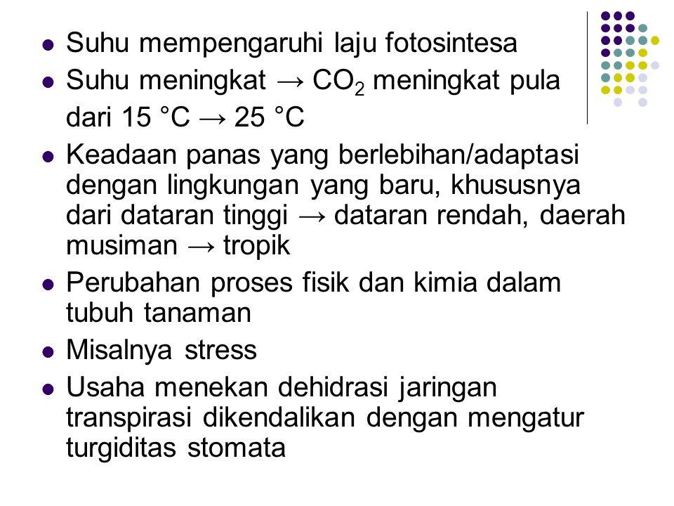 Suhu mempengaruhi laju fotosintesa