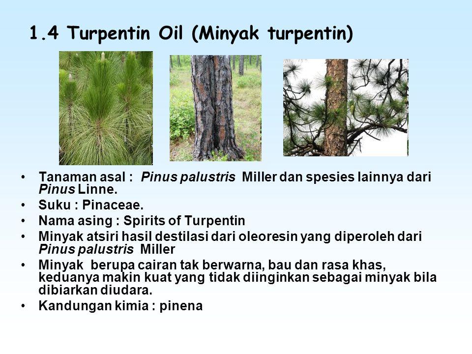 1.4 Turpentin Oil (Minyak turpentin)