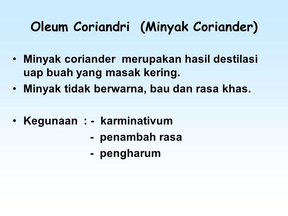 Oleum Coriandri (Minyak Coriander)