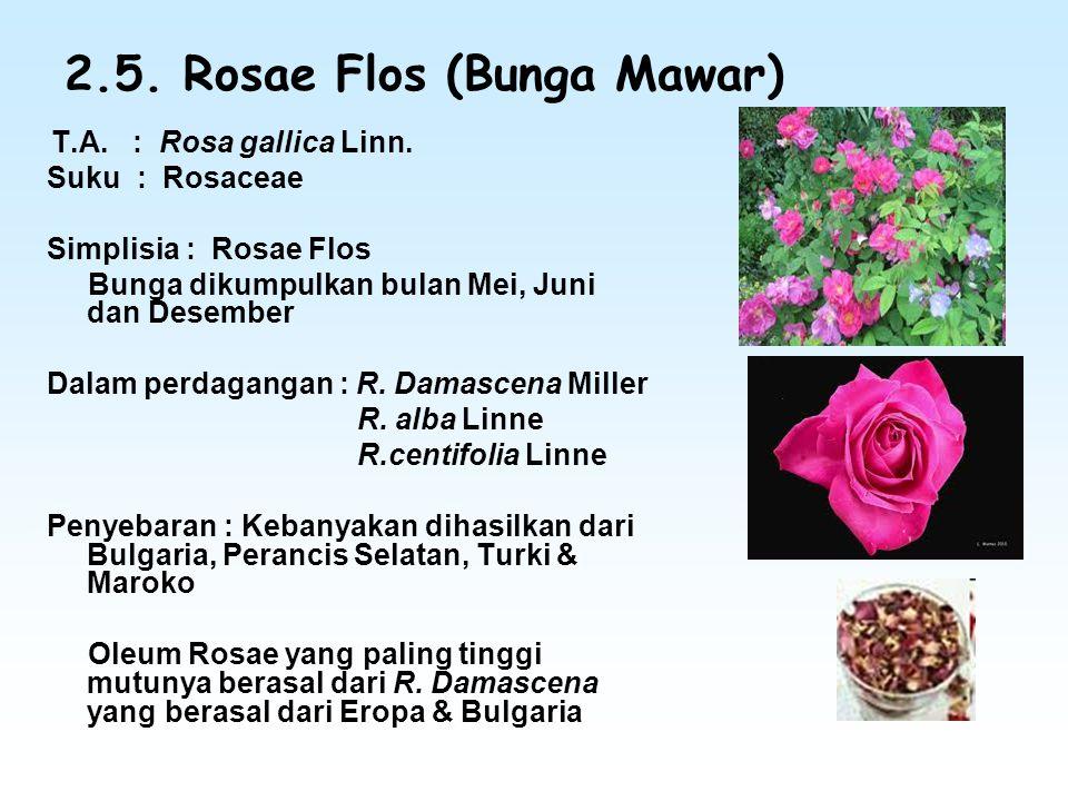 2.5. Rosae Flos (Bunga Mawar)
