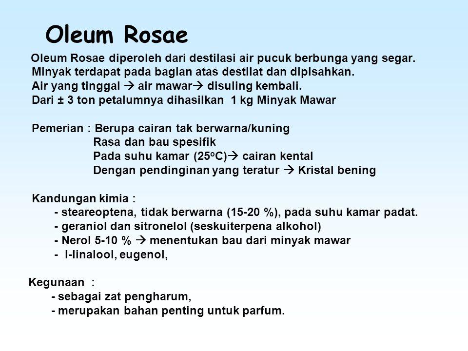 Oleum Rosae Minyak terdapat pada bagian atas destilat dan dipisahkan.