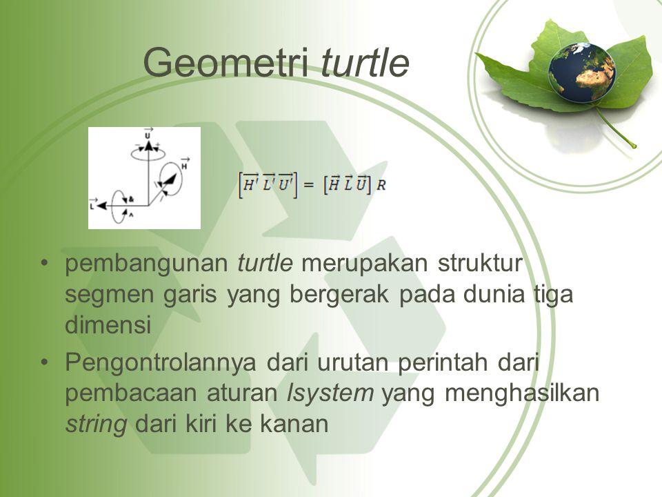 Geometri turtle pembangunan turtle merupakan struktur segmen garis yang bergerak pada dunia tiga dimensi.