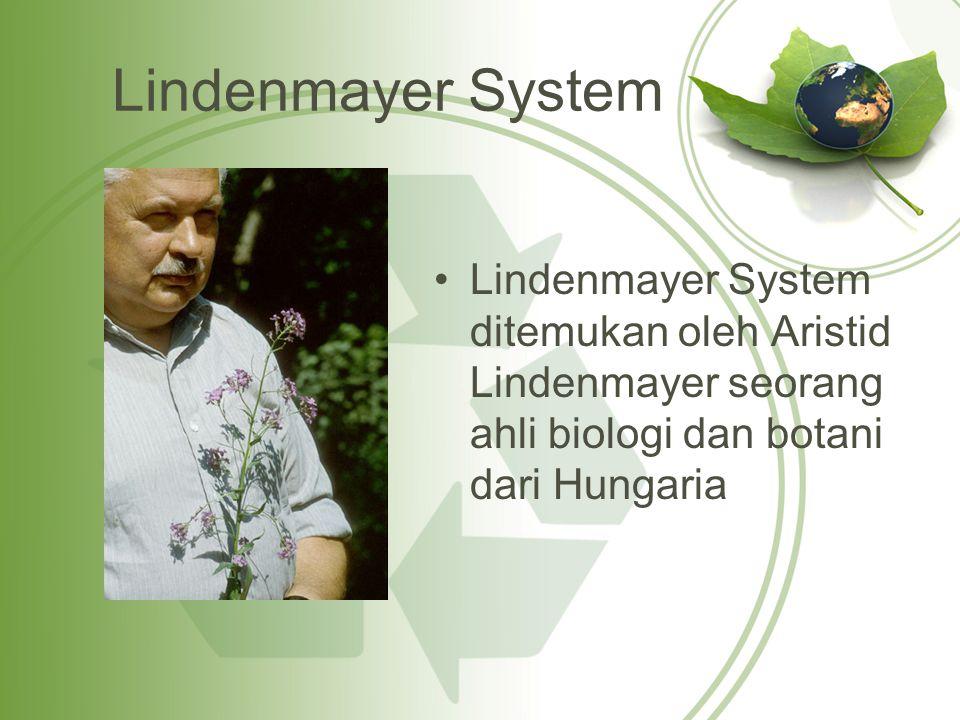 Lindenmayer System Lindenmayer System ditemukan oleh Aristid Lindenmayer seorang ahli biologi dan botani dari Hungaria.