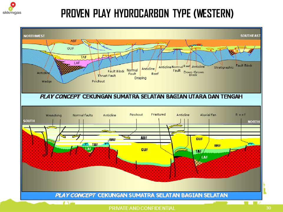 PROVEN PLAY HYDROCARBON TYPE (WESTERN)