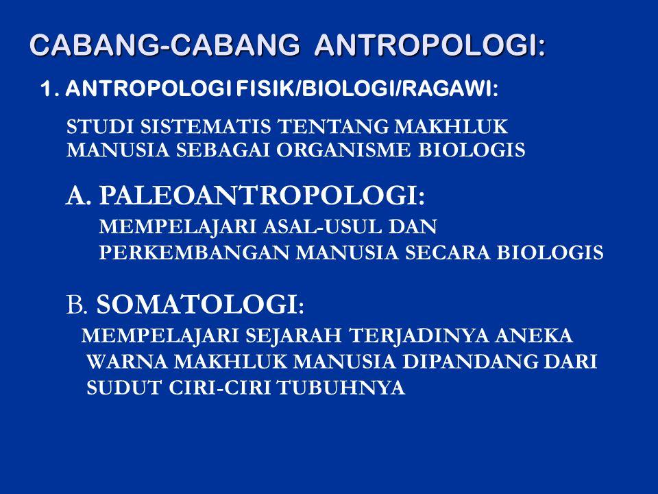 CABANG-CABANG ANTROPOLOGI: