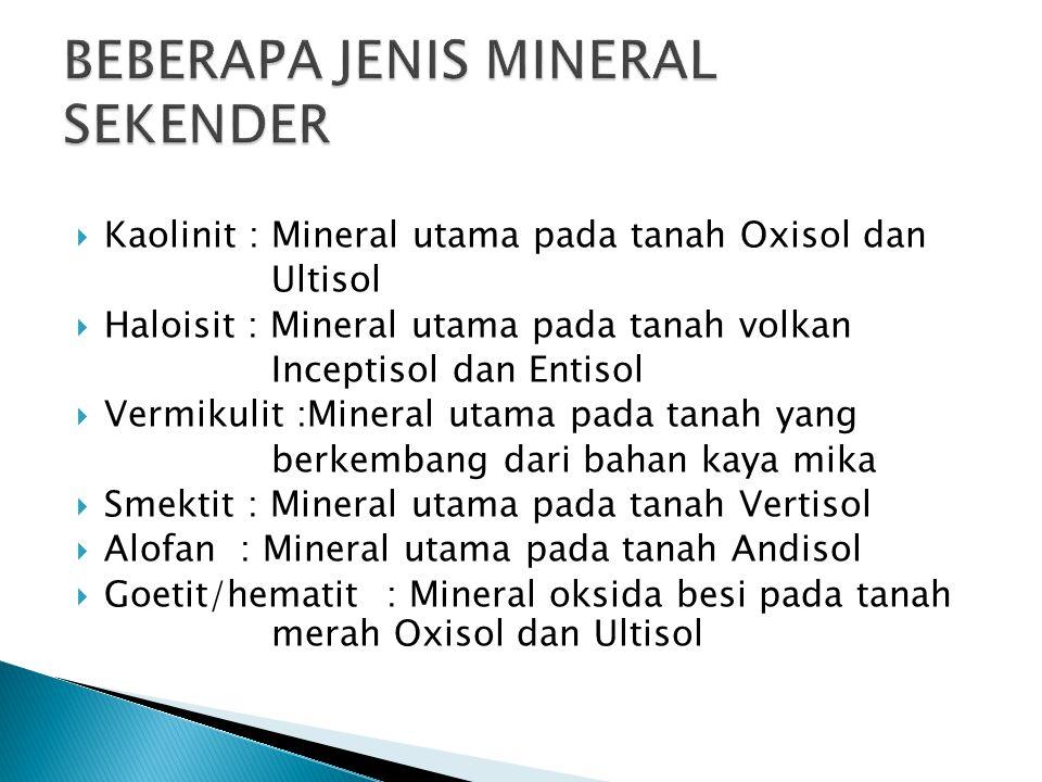 BEBERAPA JENIS MINERAL SEKENDER