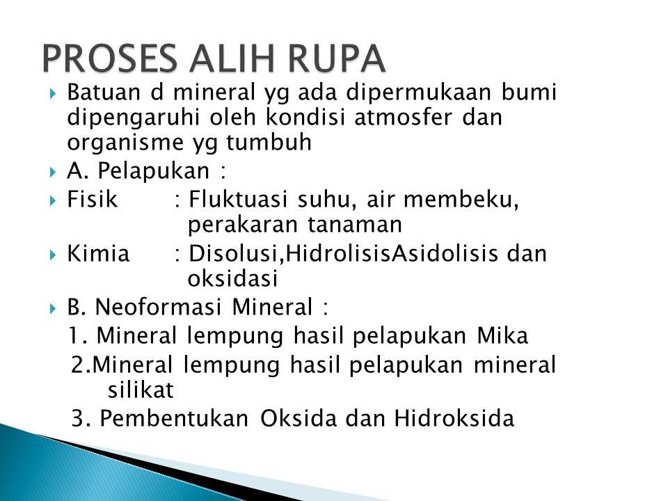 PROSES ALIH RUPA Batuan d mineral yg ada dipermukaan bumi dipengaruhi oleh kondisi atmosfer dan organisme yg tumbuh.