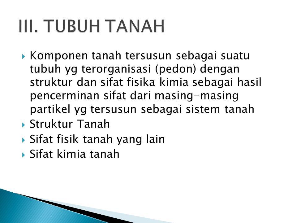 III. TUBUH TANAH