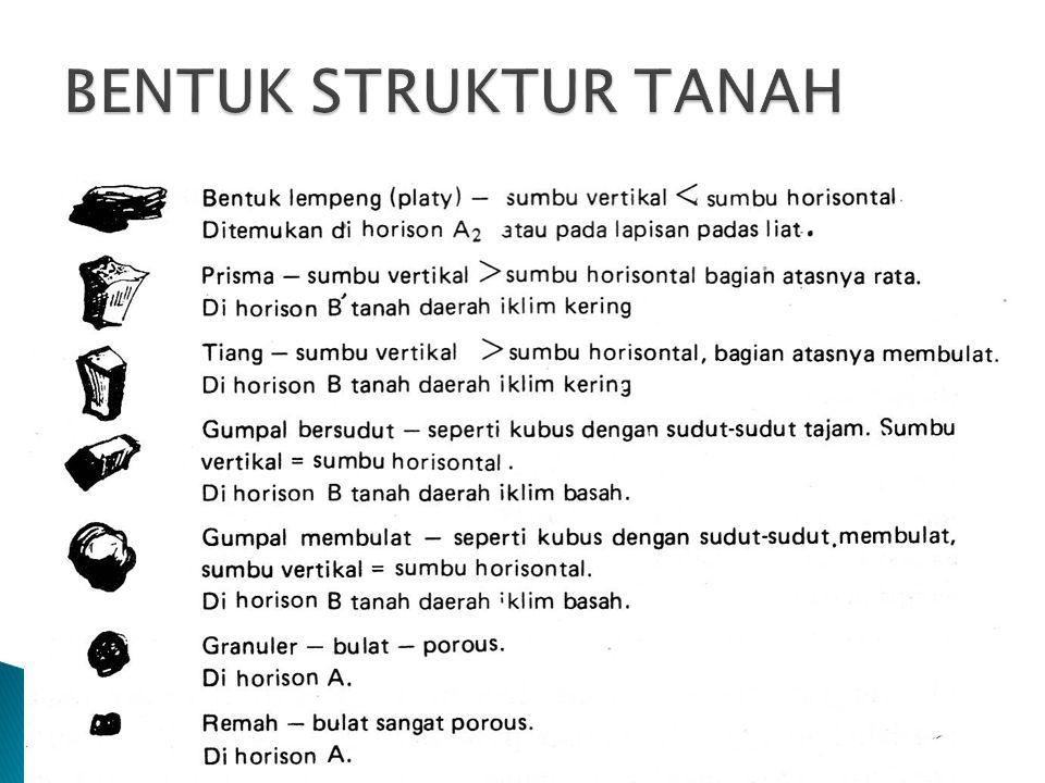 BENTUK STRUKTUR TANAH