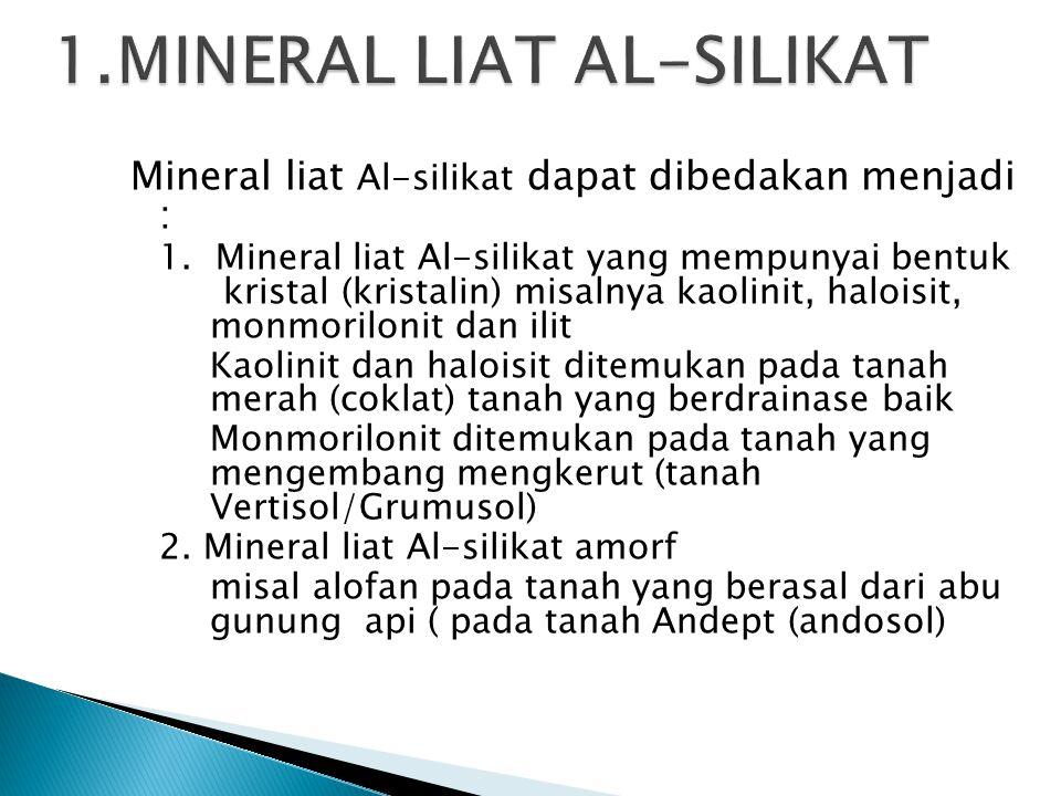 1.MINERAL LIAT AL-SILIKAT
