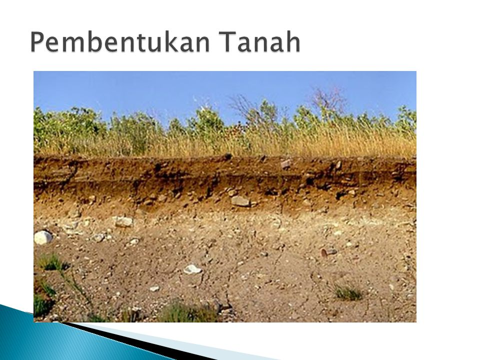 Как сделать почву плодороднее