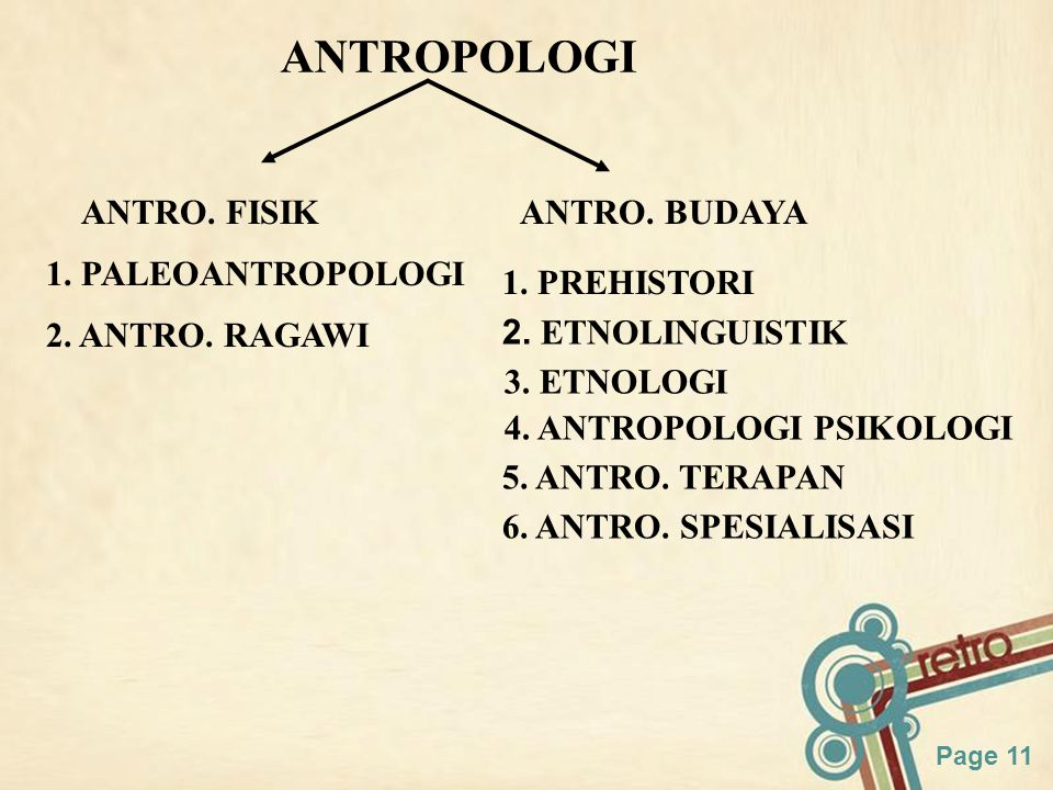 ANTROPOLOGI ANTRO. FISIK ANTRO. BUDAYA 1. PALEOANTROPOLOGI