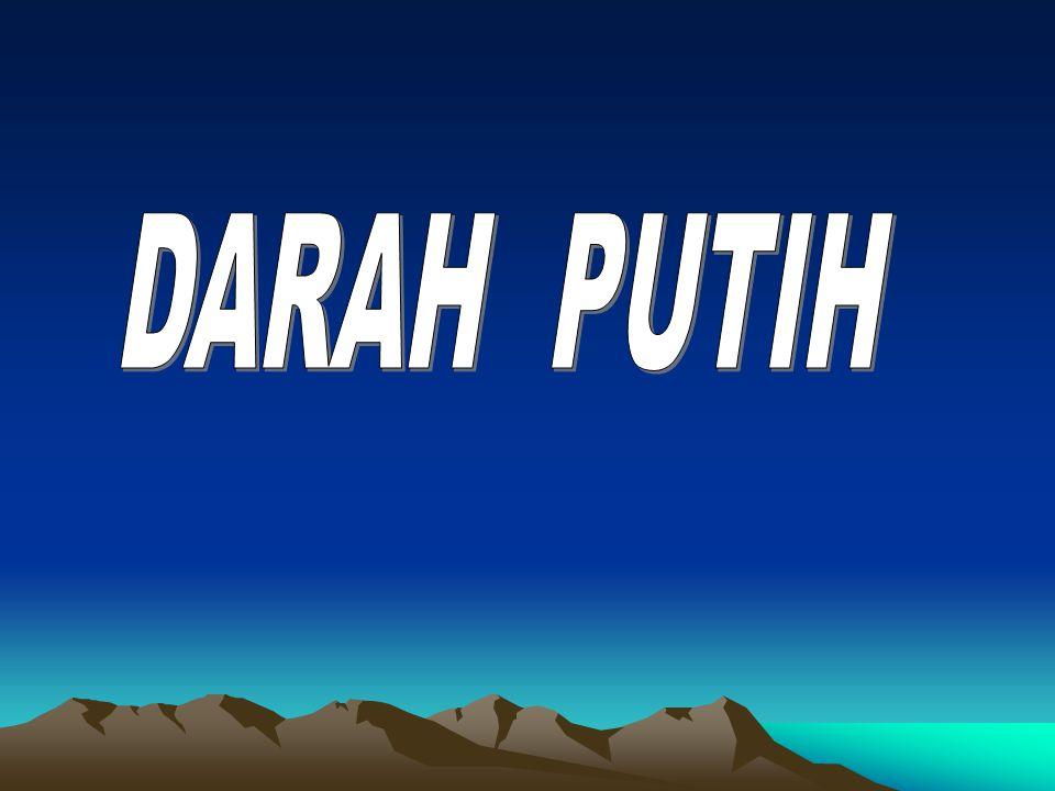 DARAH PUTIH