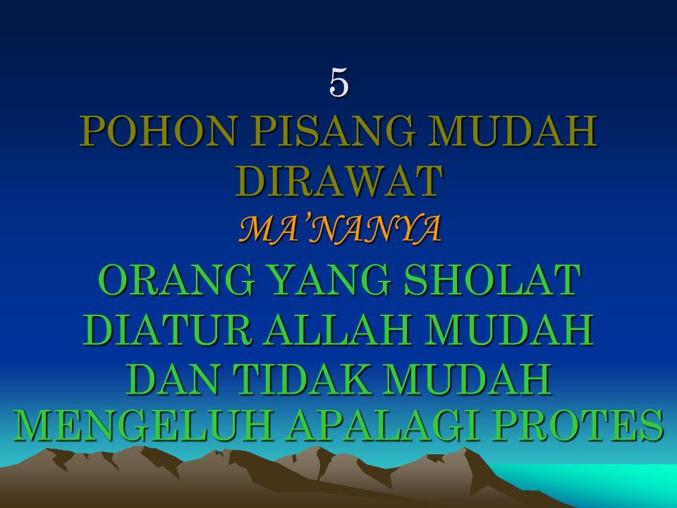 5 POHON PISANG MUDAH DIRAWAT MA'NANYA ORANG YANG SHOLAT DIATUR ALLAH MUDAH DAN TIDAK MUDAH MENGELUH APALAGI PROTES