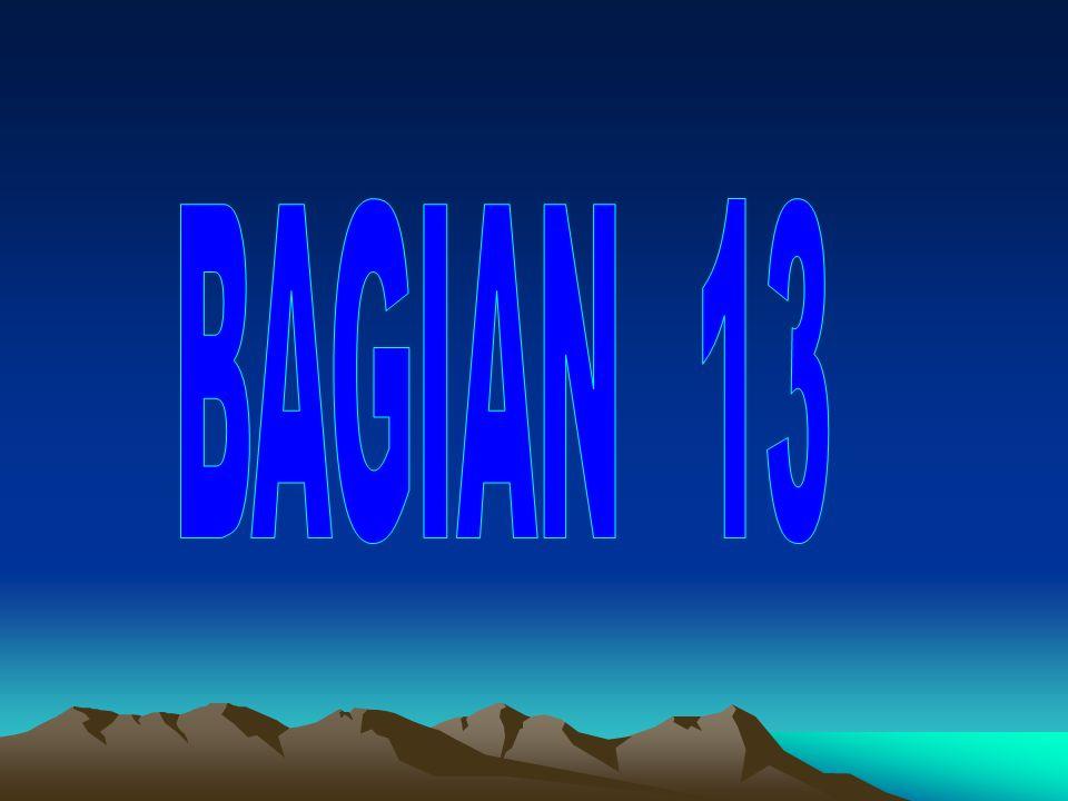 BAGIAN 13