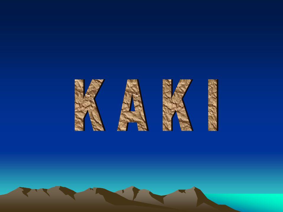 K A K I