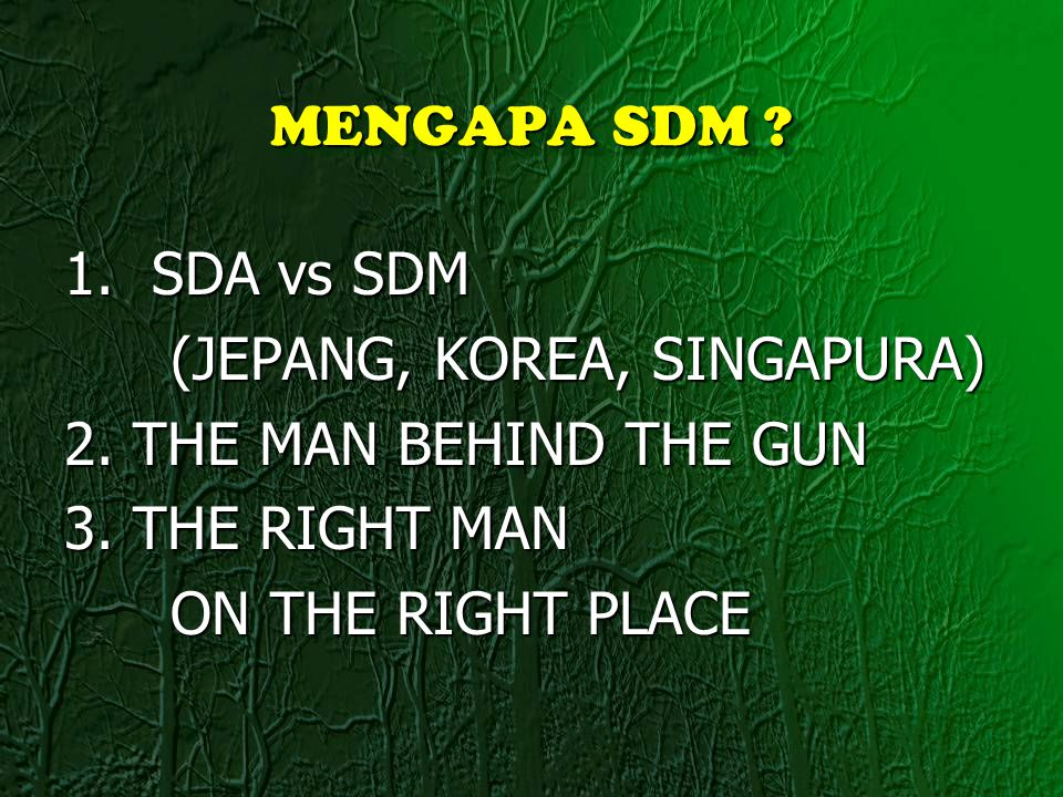 MENGAPA SDM 1. SDA vs SDM. (JEPANG, KOREA, SINGAPURA) 2. THE MAN BEHIND THE GUN. 3. THE RIGHT MAN.