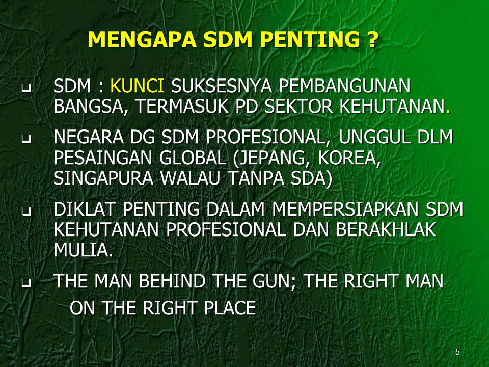 MENGAPA SDM PENTING SDM : KUNCI SUKSESNYA PEMBANGUNAN BANGSA, TERMASUK PD SEKTOR KEHUTANAN.