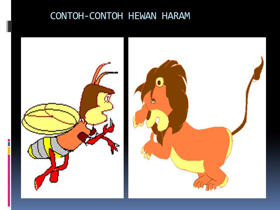 CONTOH-CONTOH HEWAN HARAM