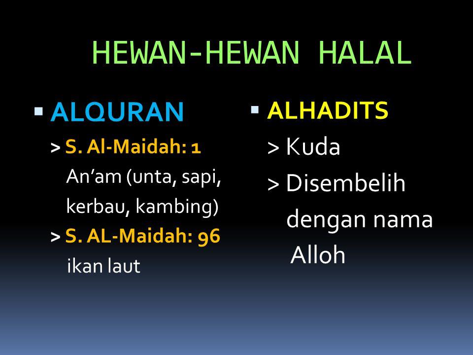 HEWAN-HEWAN HALAL ALQURAN ALHADITS > Kuda > Disembelih