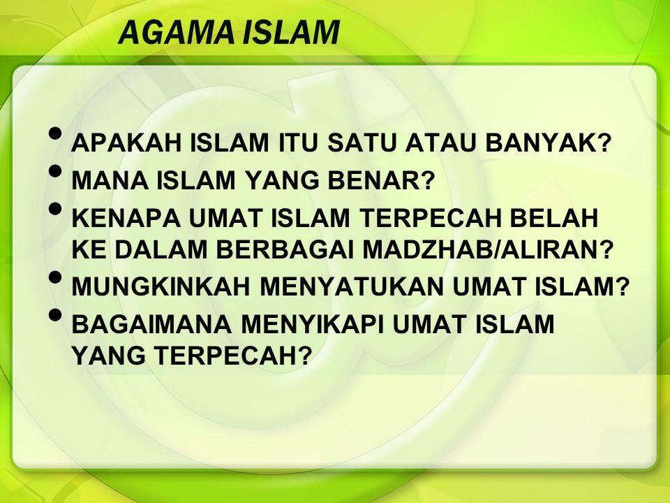 AGAMA ISLAM APAKAH ISLAM ITU SATU ATAU BANYAK MANA ISLAM YANG BENAR
