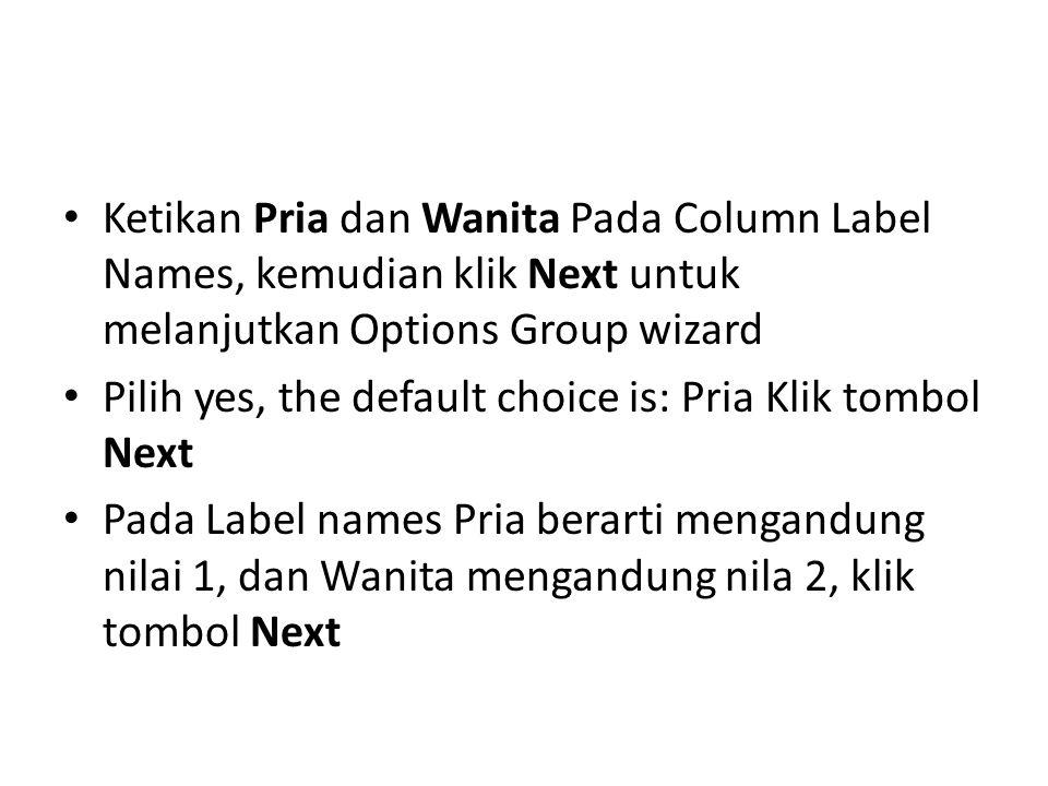 Ketikan Pria dan Wanita Pada Column Label Names, kemudian klik Next untuk melanjutkan Options Group wizard