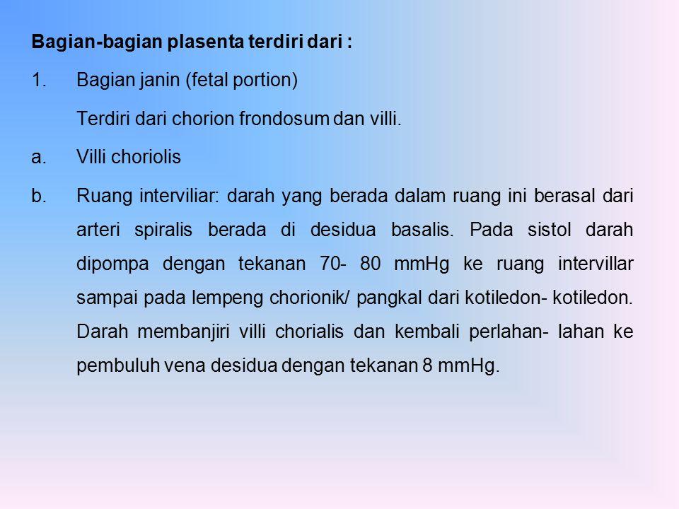 Bagian-bagian plasenta terdiri dari :