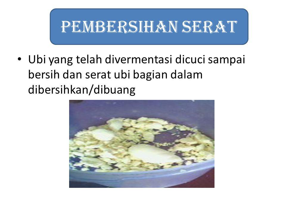 Pembersihan Serat Ubi yang telah divermentasi dicuci sampai bersih dan serat ubi bagian dalam dibersihkan/dibuang.