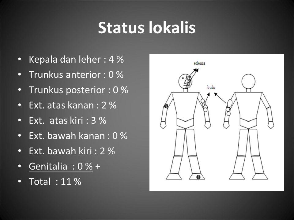 Status lokalis Kepala dan leher : 4 % Trunkus anterior : 0 %