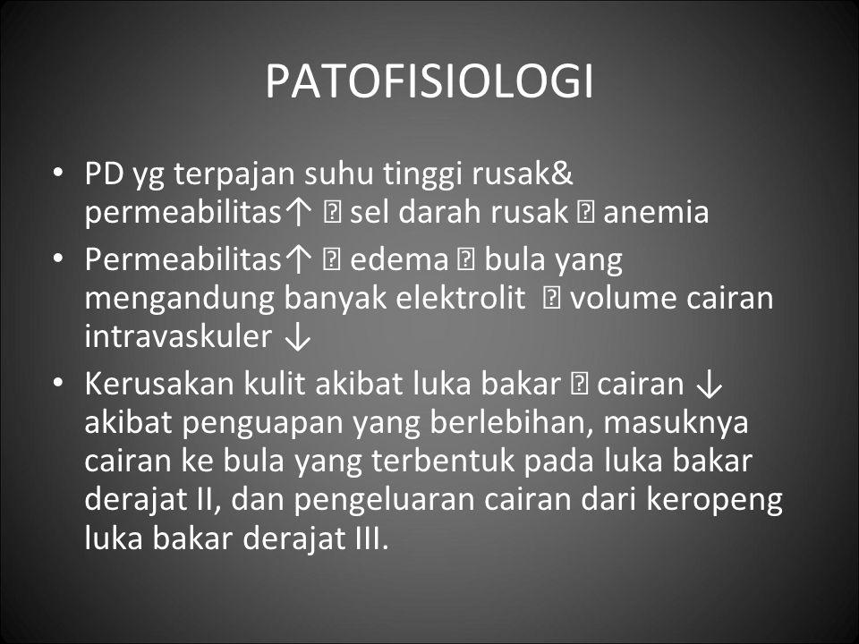 PATOFISIOLOGI PD yg terpajan suhu tinggi rusak& permeabilitas↑  sel darah rusak  anemia.
