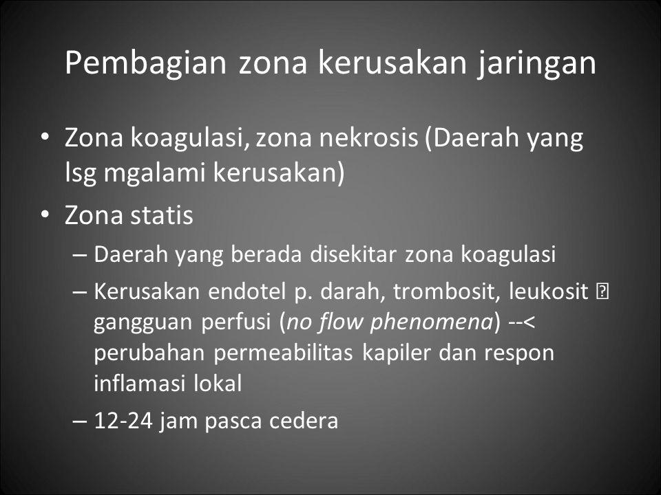 Pembagian zona kerusakan jaringan