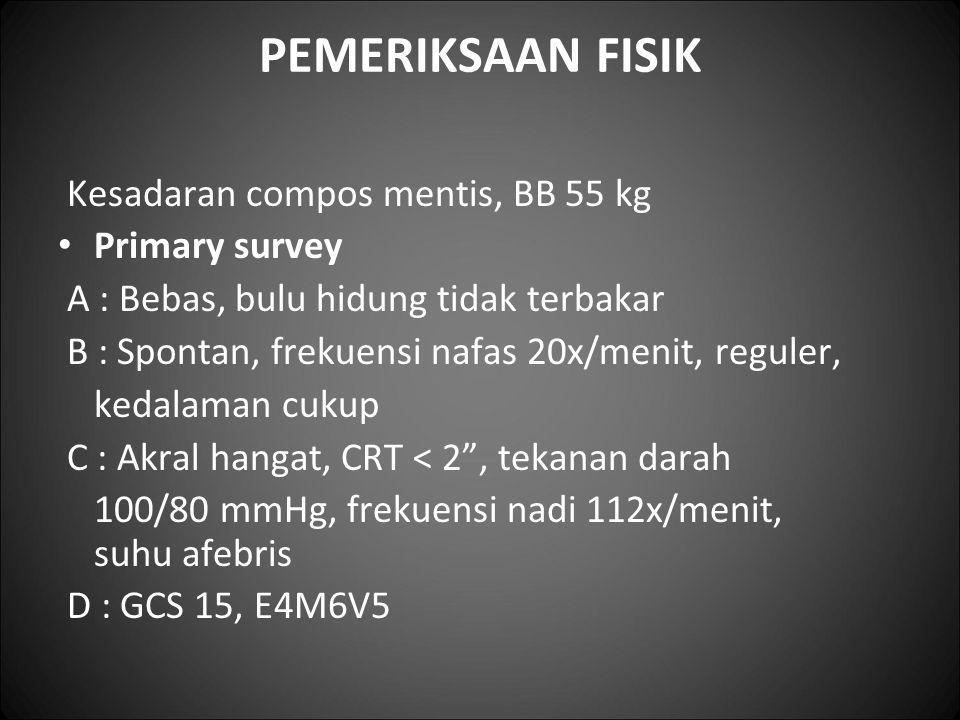 PEMERIKSAAN FISIK Kesadaran compos mentis, BB 55 kg Primary survey