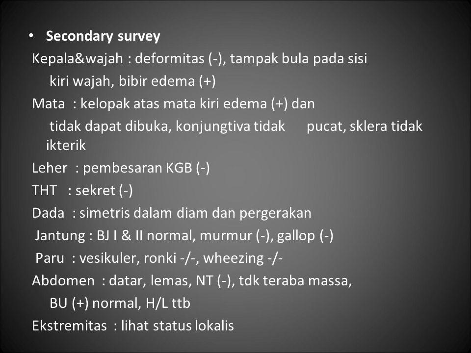 Secondary survey Kepala&wajah : deformitas (-), tampak bula pada sisi. kiri wajah, bibir edema (+)