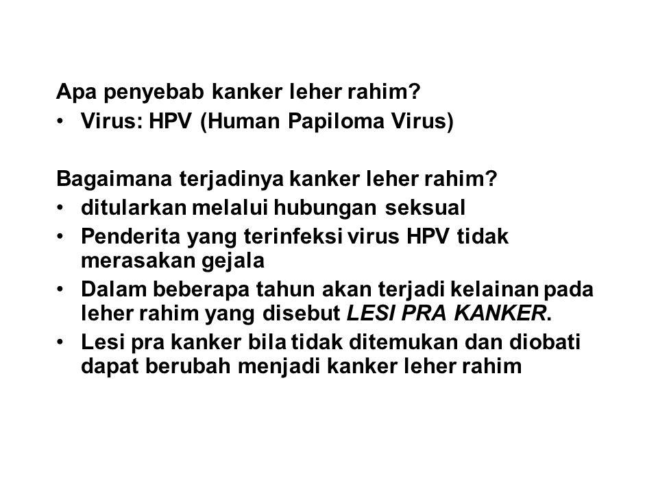 Apa penyebab kanker leher rahim
