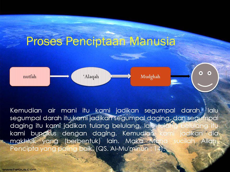 Proses Penciptaan Manusia
