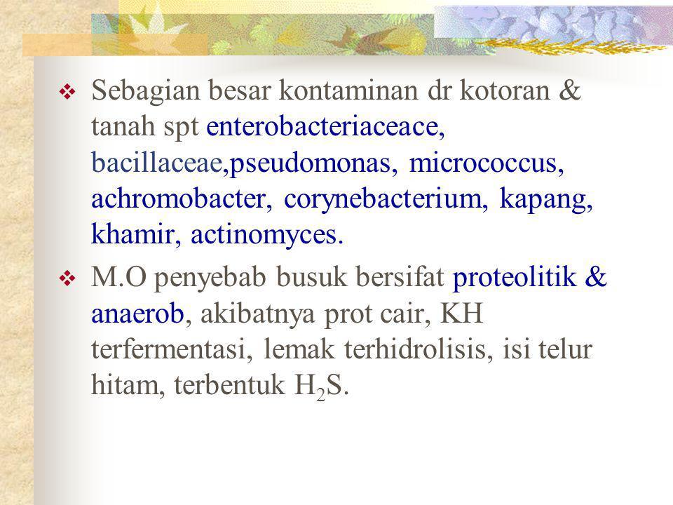 Sebagian besar kontaminan dr kotoran & tanah spt enterobacteriaceace, bacillaceae,pseudomonas, micrococcus, achromobacter, corynebacterium, kapang, khamir, actinomyces.