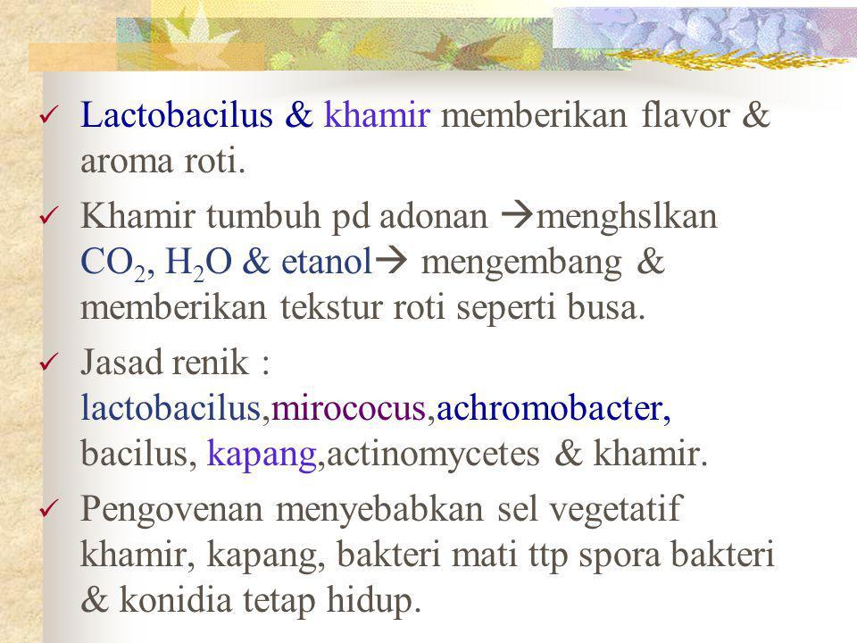Lactobacilus & khamir memberikan flavor & aroma roti.