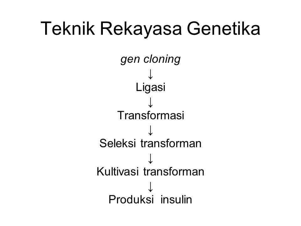Teknik Rekayasa Genetika