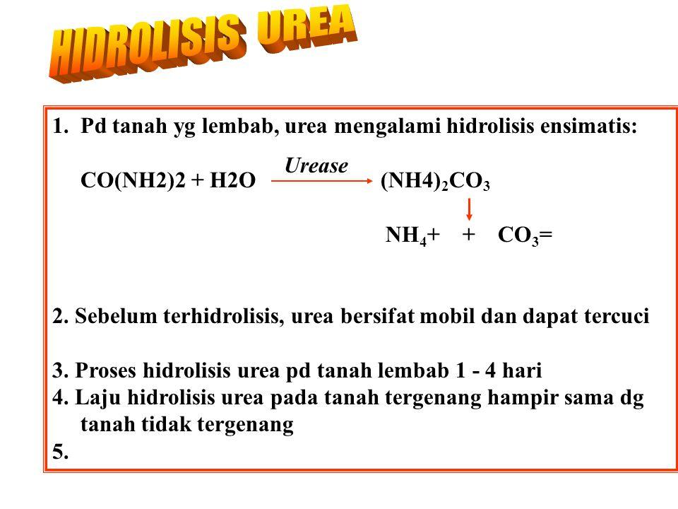 HIDROLISIS UREA 1. Pd tanah yg lembab, urea mengalami hidrolisis ensimatis: CO(NH2)2 + H2O (NH4)2CO3.