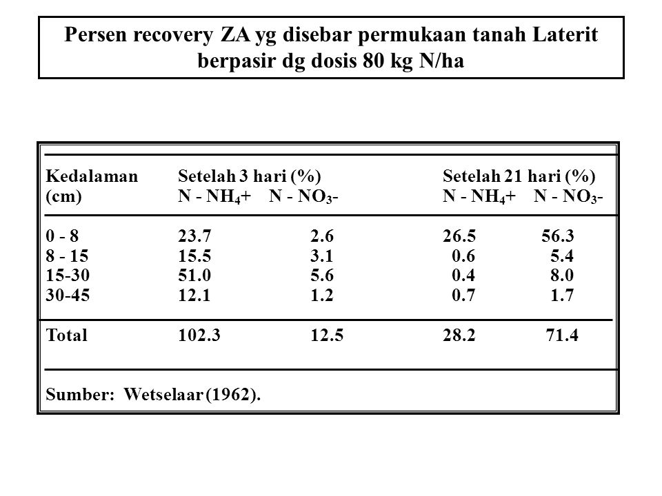 Persen recovery ZA yg disebar permukaan tanah Laterit berpasir dg dosis 80 kg N/ha