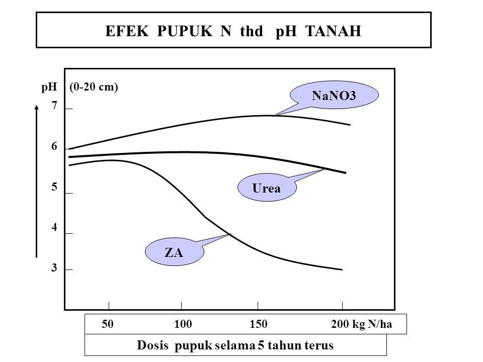 EFEK PUPUK N thd pH TANAH Dosis pupuk selama 5 tahun terus