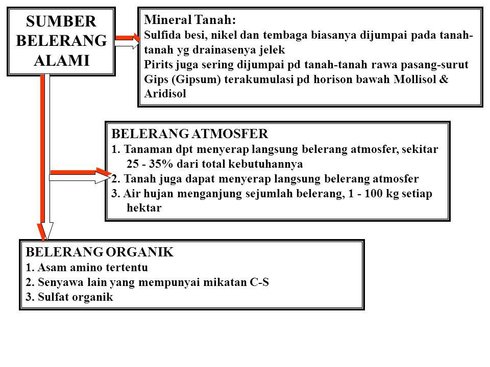 SUMBER BELERANG ALAMI Mineral Tanah: BELERANG ATMOSFER