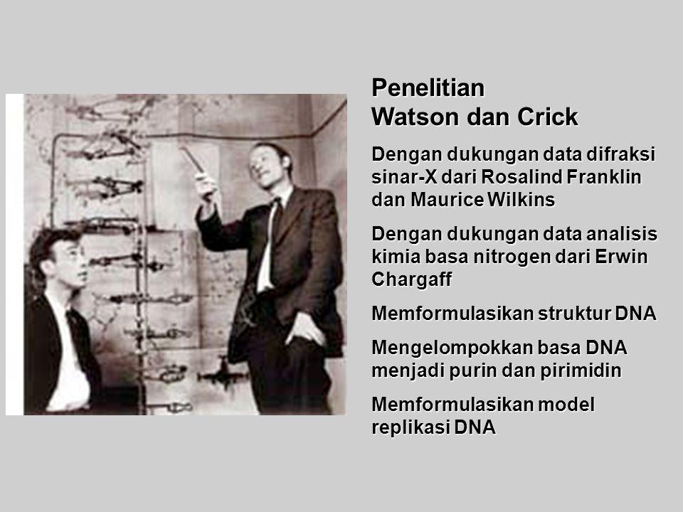 Penelitian Watson dan Crick